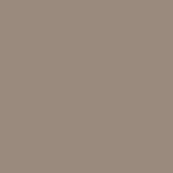 10254 brun jord S5005-Y20R